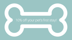 10-off-your-pets-first-stay